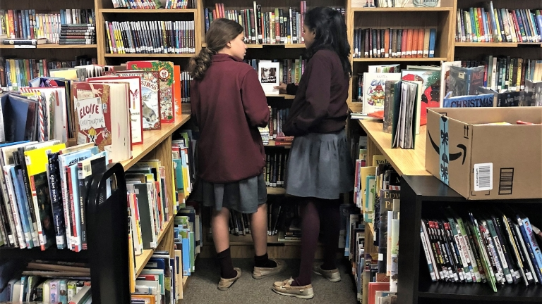 Two girls checking out the book selection in the library